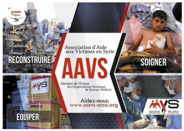 AAVS-Flyer